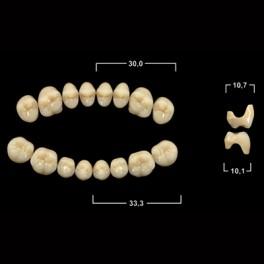 Акриловые зубы Tribos 501, жевательный верх - SSA