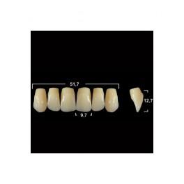 Акриловые зубы Tribos 501, фронт, верх - VO37