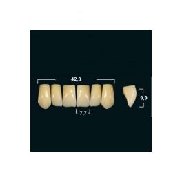 Акриловые зубы Tribos 501, фронт, верх - VR16