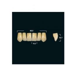 Акриловые зубы Tribos 501, фронт, верх - VR14